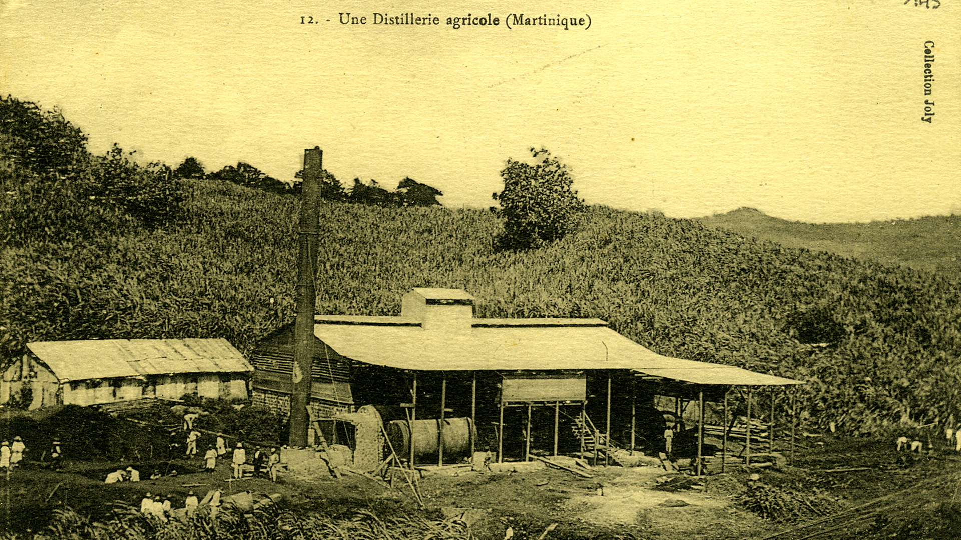 Distillerie agricole (martinique)